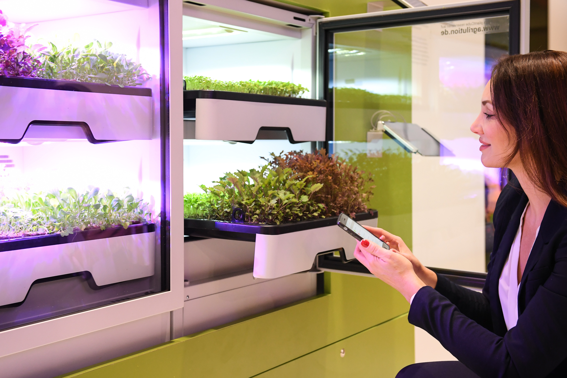 "Intelligent greenhouse ""plantCube"""